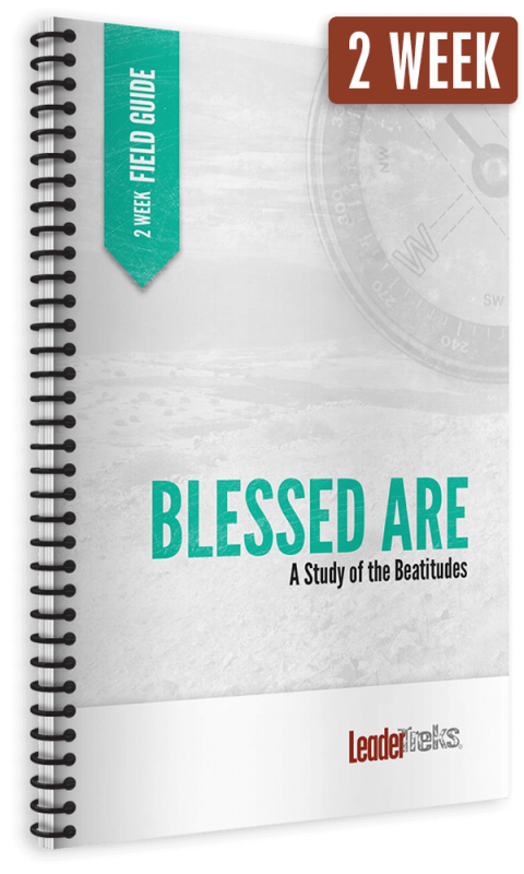 blessed are 2 week mission trip devotional
