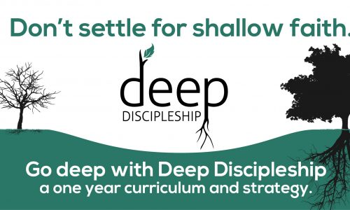 Deep discipleship curriculum and strategy