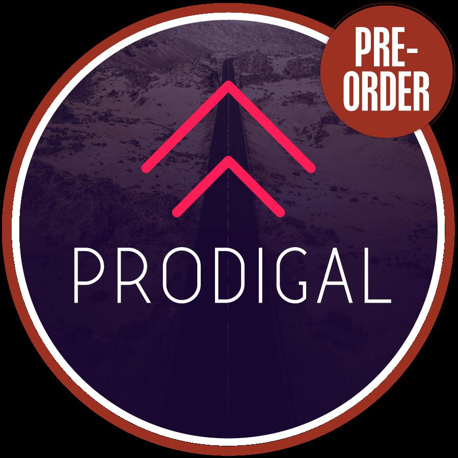Prodigal Study | LeaderTreks Youth Ministry