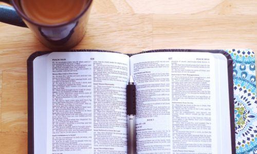 studying bible for students