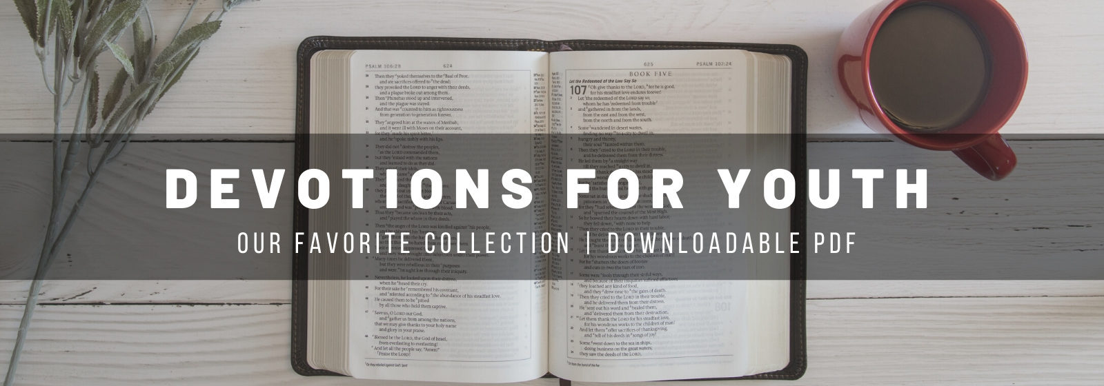 devotions for youth and teens